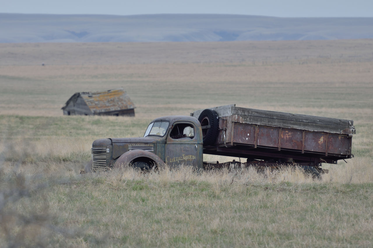 Out to pasture Abandoned Alberta Antique Backroads Canada Farm Track Field Grass Ihc International Landscape Nature No People Obsolete Old-fashioned Outdoors Rural Scenes Sky Stationary Transportation Truck Vintage