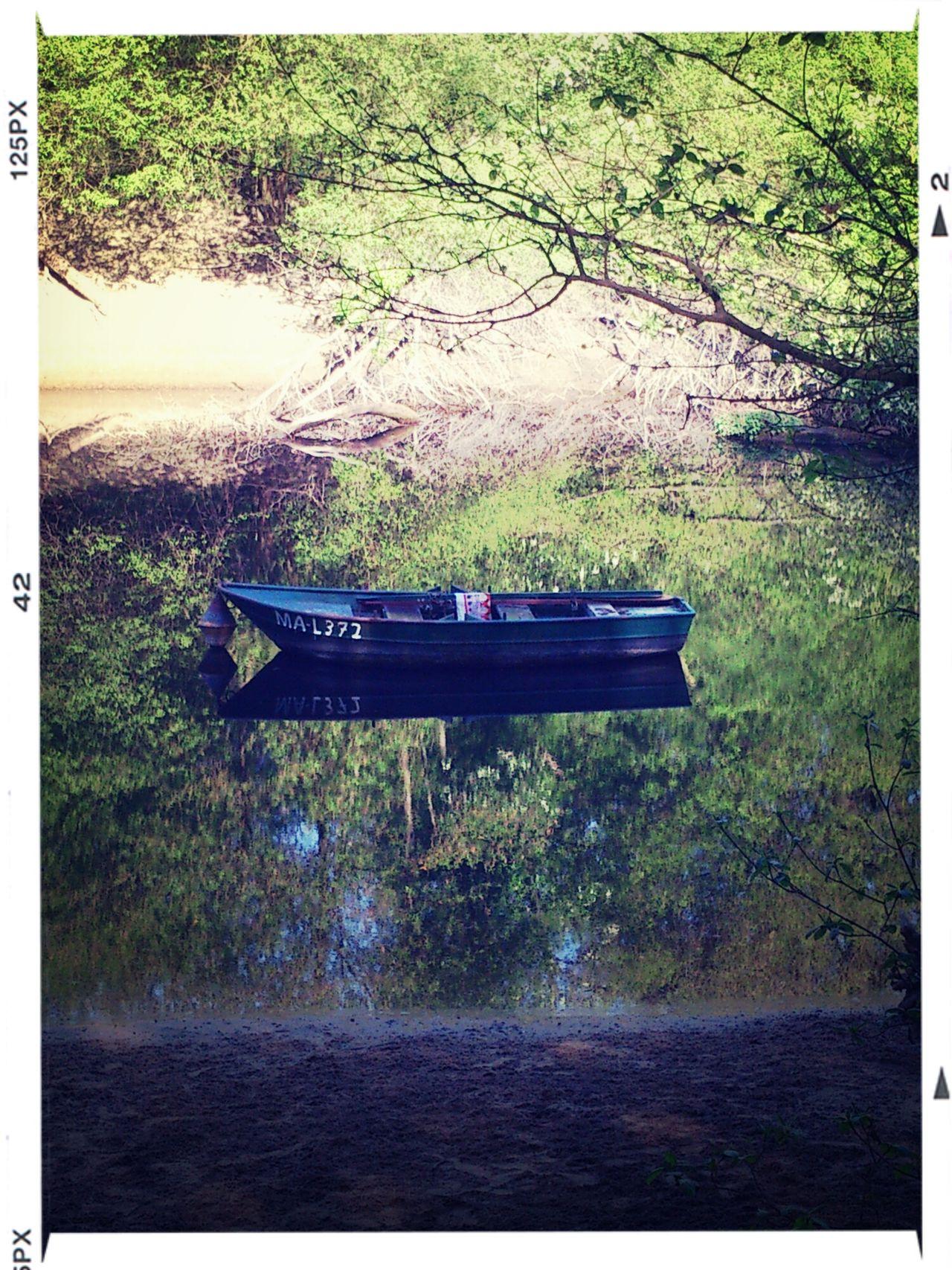 Fischerboot am Altrhein
