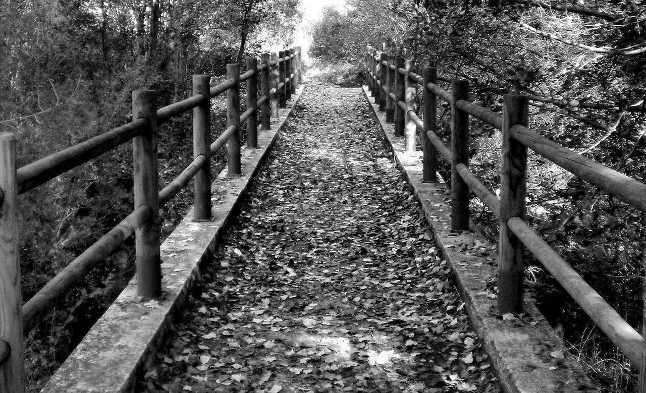 Paseos de otro tiempo Segovia Provincia Sepulveda Sepulveda. Paseos Puentes