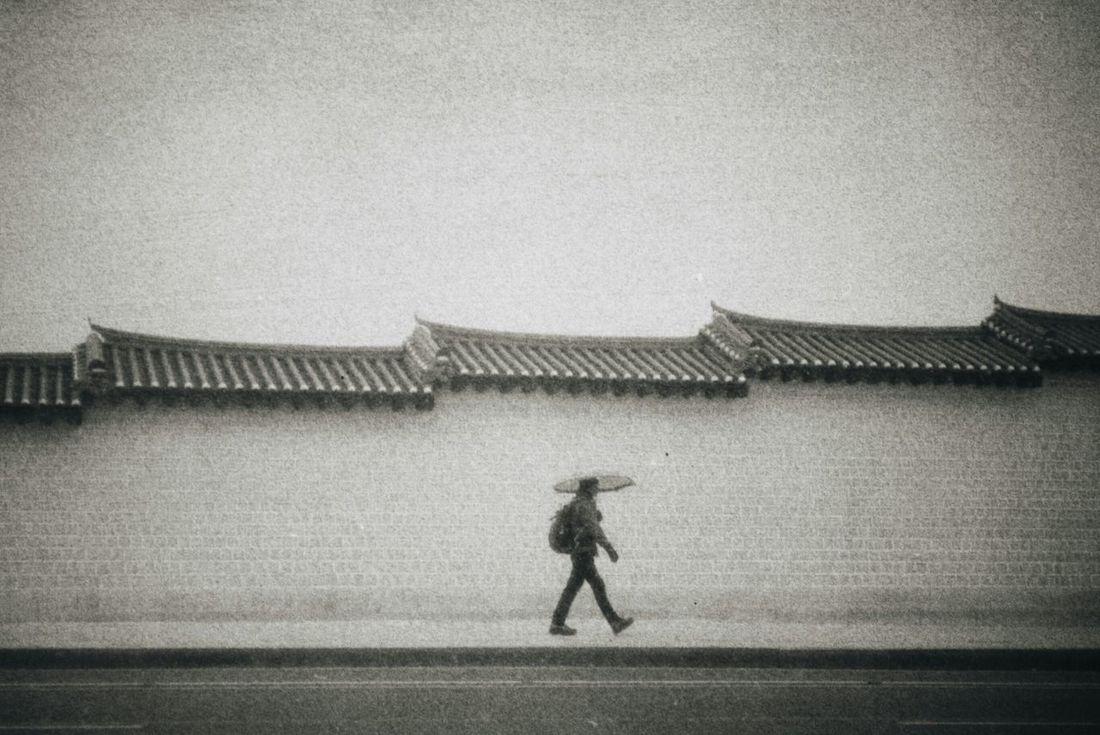 On snowy day, Seoul, S.Korea in 2014. Nikon RF S2 Ishootfilm Tmax400 Filmisnotdead 35mm Film Black And White Film Photography Monochrome