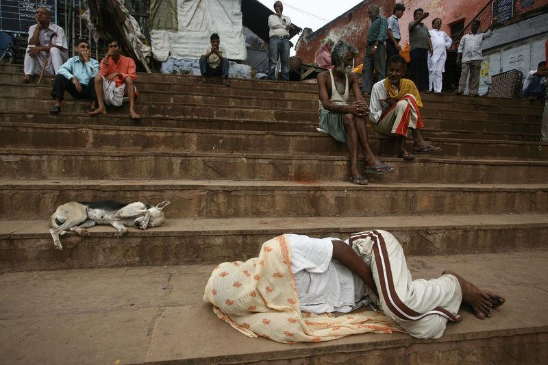 Benares Covered Covered Face Daily Life Dogs Ganges River Ghats  Hindu India Lifestyles Man Sleeping On The Street North India Real People Sleep Sleeping Sleeping Dog Sleeping On The Floor Stairs UttarPradesh Varanasi