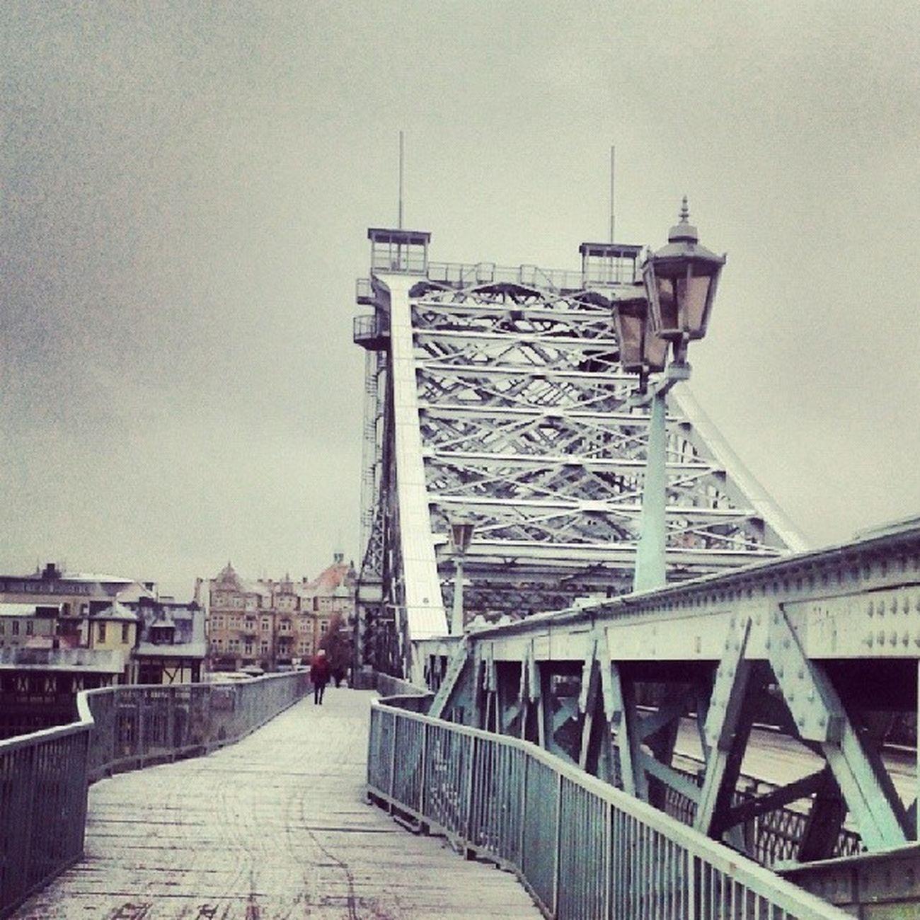 Schnee ...und grau... da freut sich klein Kadda :) Blaueswunder Dresden