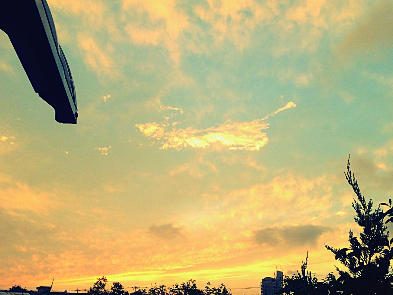 夕陽 Beautiful Summer EyeEm Nature Lover Nature Enjoying Life Sky VariousColors Clouds And Sky