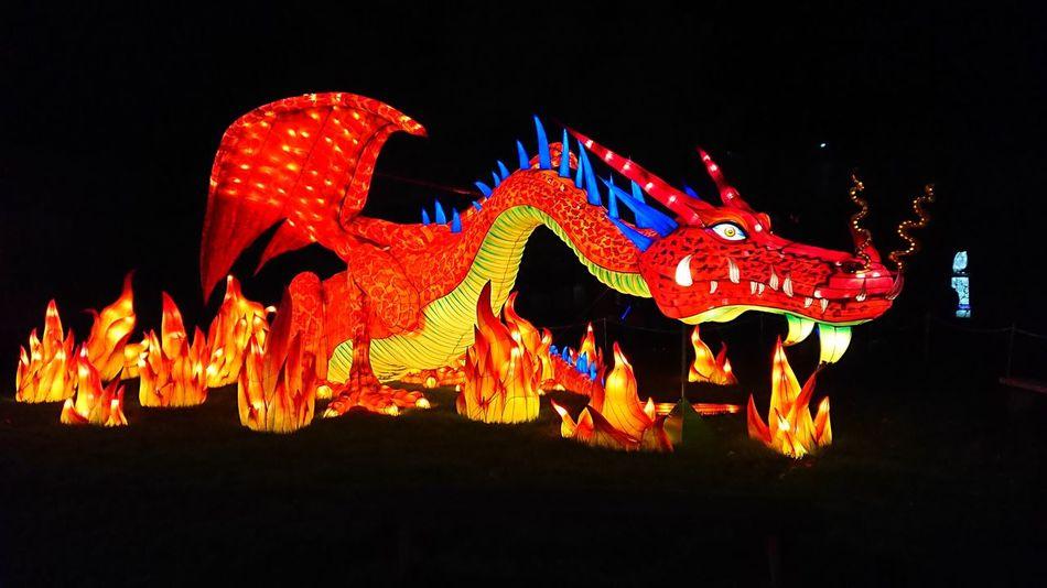 Longleat Wiltshire Festival of Lights