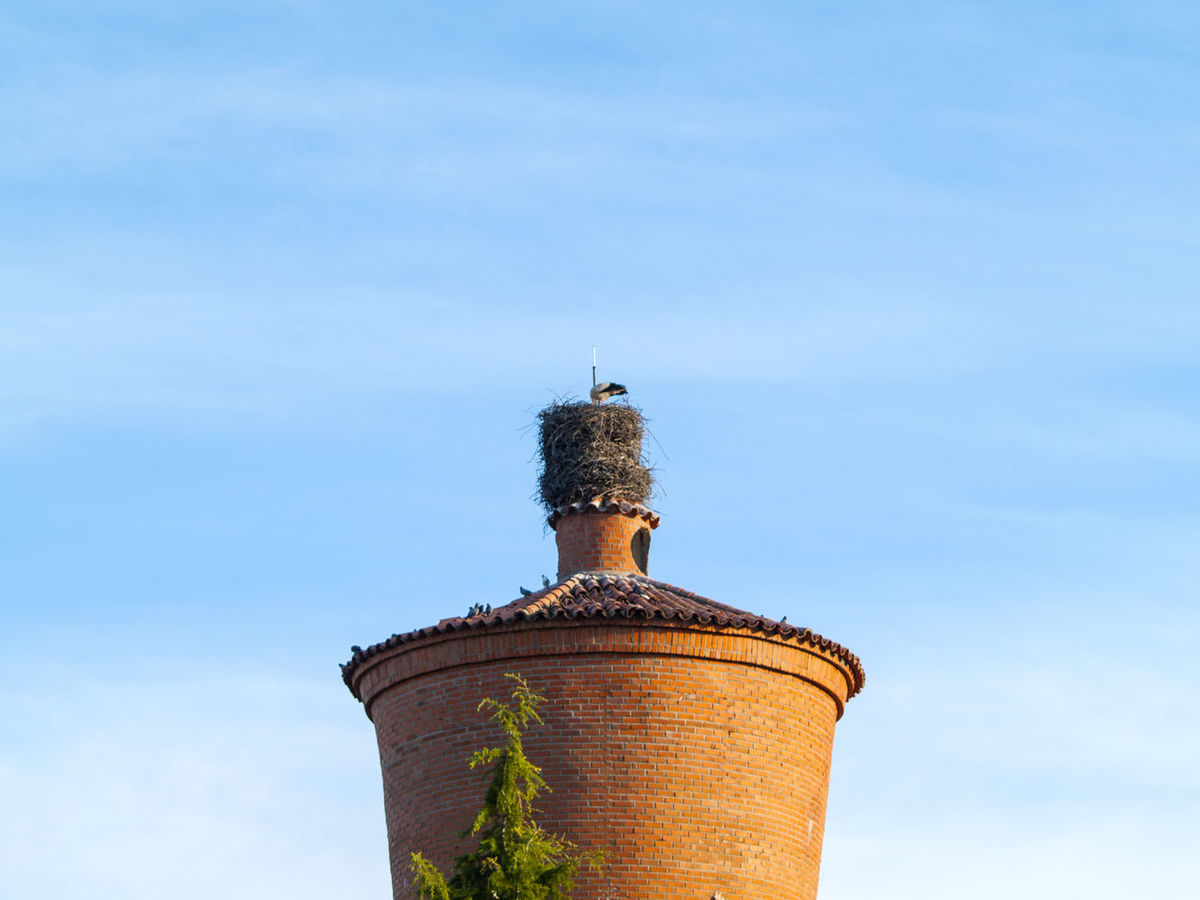 Architecture Architecture Building Building Exterior Built Structure Chimney Day Geometric Architecture Low Angle View No People Outdoor Outdoors Roof Rooftop Rural Architecture Rural Scene Sky Storage Tank Stork Stork Nest Village Life Water Tower Water Tower - Storage Tank
