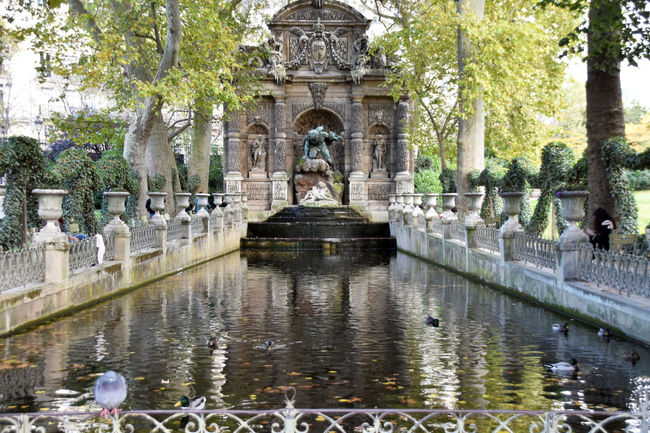 Built Structure Check This Out Day Eye For Photography Eye4photography  EyeEm Best Shots EyeEm Best Shots - Nature EyeEm Gallery EyeEm Nature Lover EyeEmBestPics Eyeemphotography Formal Garden Fountain Fountain Hello World History Jardin Du Luxembourg Outdoors Paris Paris, France  Park - Man Made Space Stone Material Tranquility Tree Water