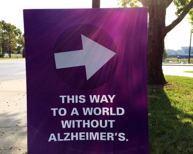 Communication Tree Close-up Road Sign Signboard Text Guidance Day AlzheimersAwareness Fighting Fighting For Freedom Medical Medicine Awareness