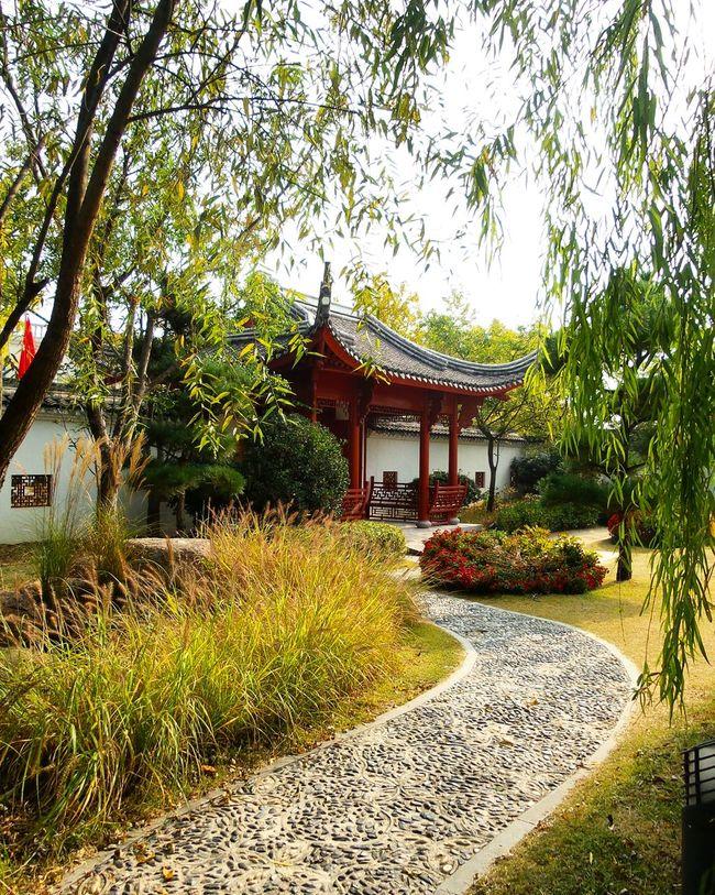 순천만정원 순천 세계정원 중국정원 정원 중국 China Garden China Garden