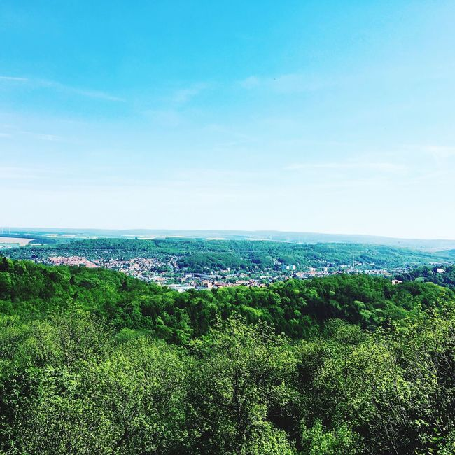 Today in the Wartburg in Eisenach Martin Luther Wartburg In Eisenach/ Germany Wartburg Freedom Nature Beauty In Nature Day First Eyeem Photo