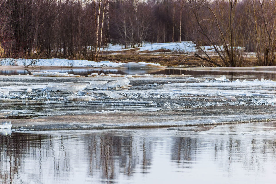 Early spring, the ice drift on the river. Cold Temperature Day Debacle Frozen Frozen Lake Ice Landscape Mologa Nature No People Outdoors River Scenics Snow Spring Tranquility Tree Water Winter
