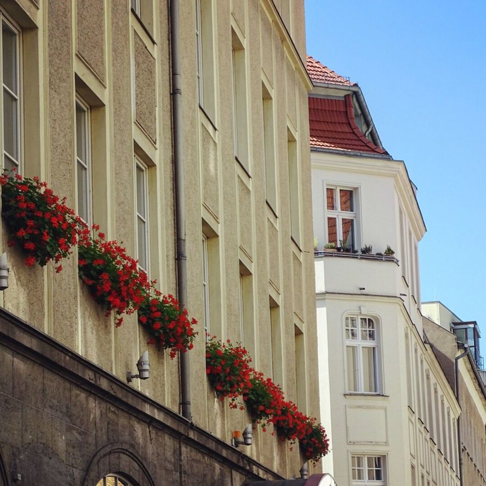 Streetsofberlin Lookup Berlin Summervibes