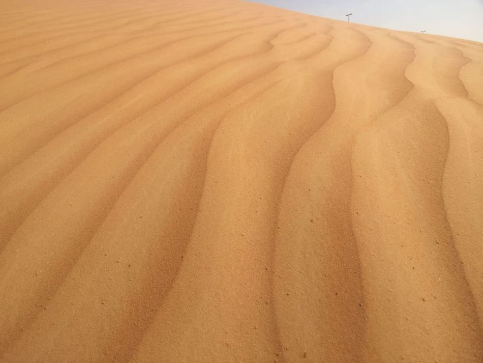 Sand Sand Dune Nature Desert Arid Climate Day Outdoors No People Beauty In Nature Close-up
