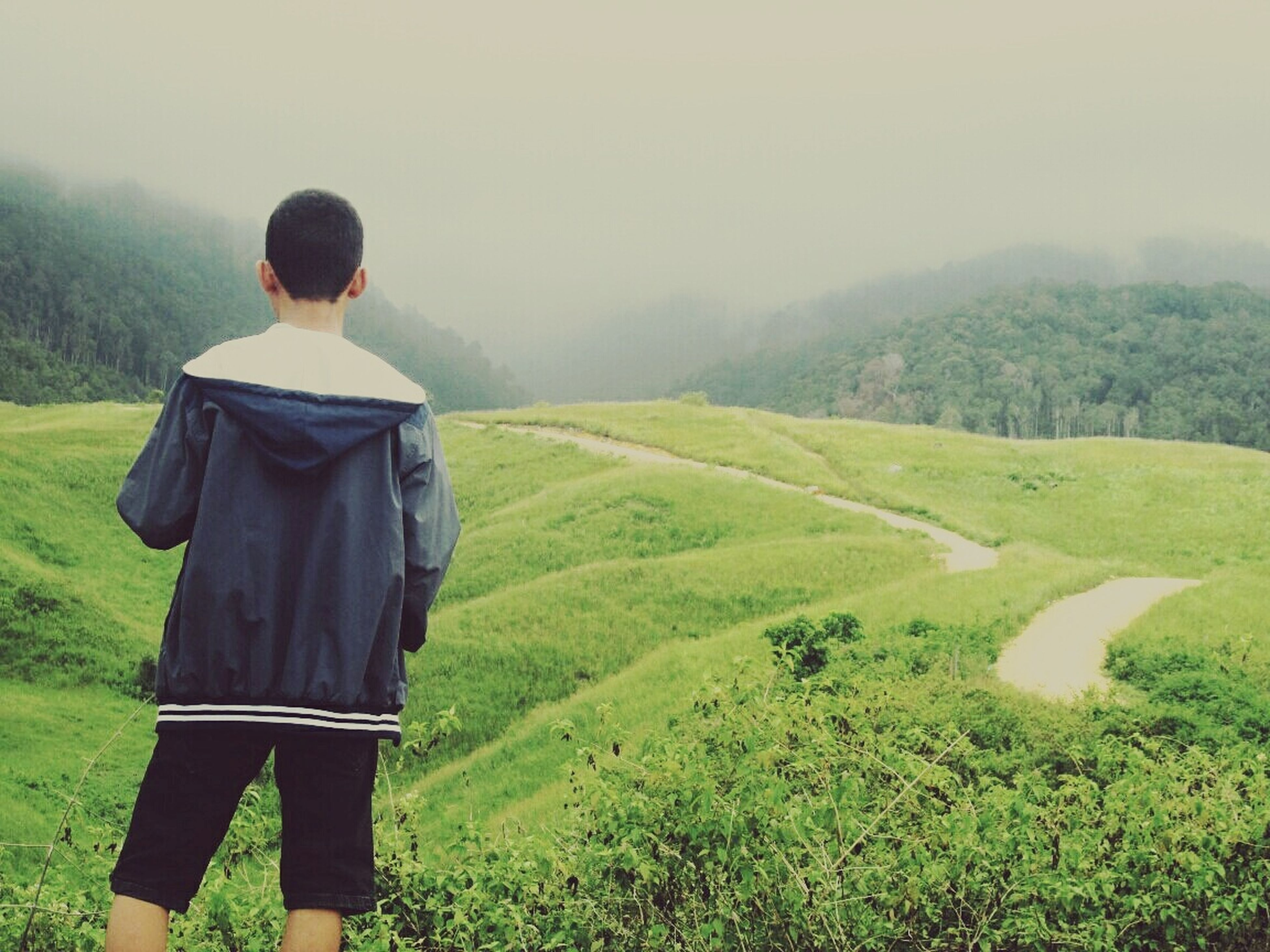 landscape, mountain, nature, real people, rear view, field, tree, green color, scenics, casual clothing, fog, one person, outdoors, day, beauty in nature, lifestyles, men, grass, sky, people
