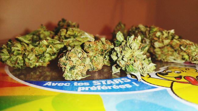 Beuh Tête De Beuh Haribo Cannabis.👌🍁