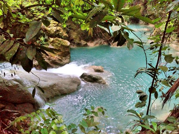 Secret Nature Nature Water Outdoors Beauty In Nature Scenics Tree Green Color Waterfall Itsmorefuninthephilippines Beauty In Nature Waterfalls In Philippines KawasanFalls