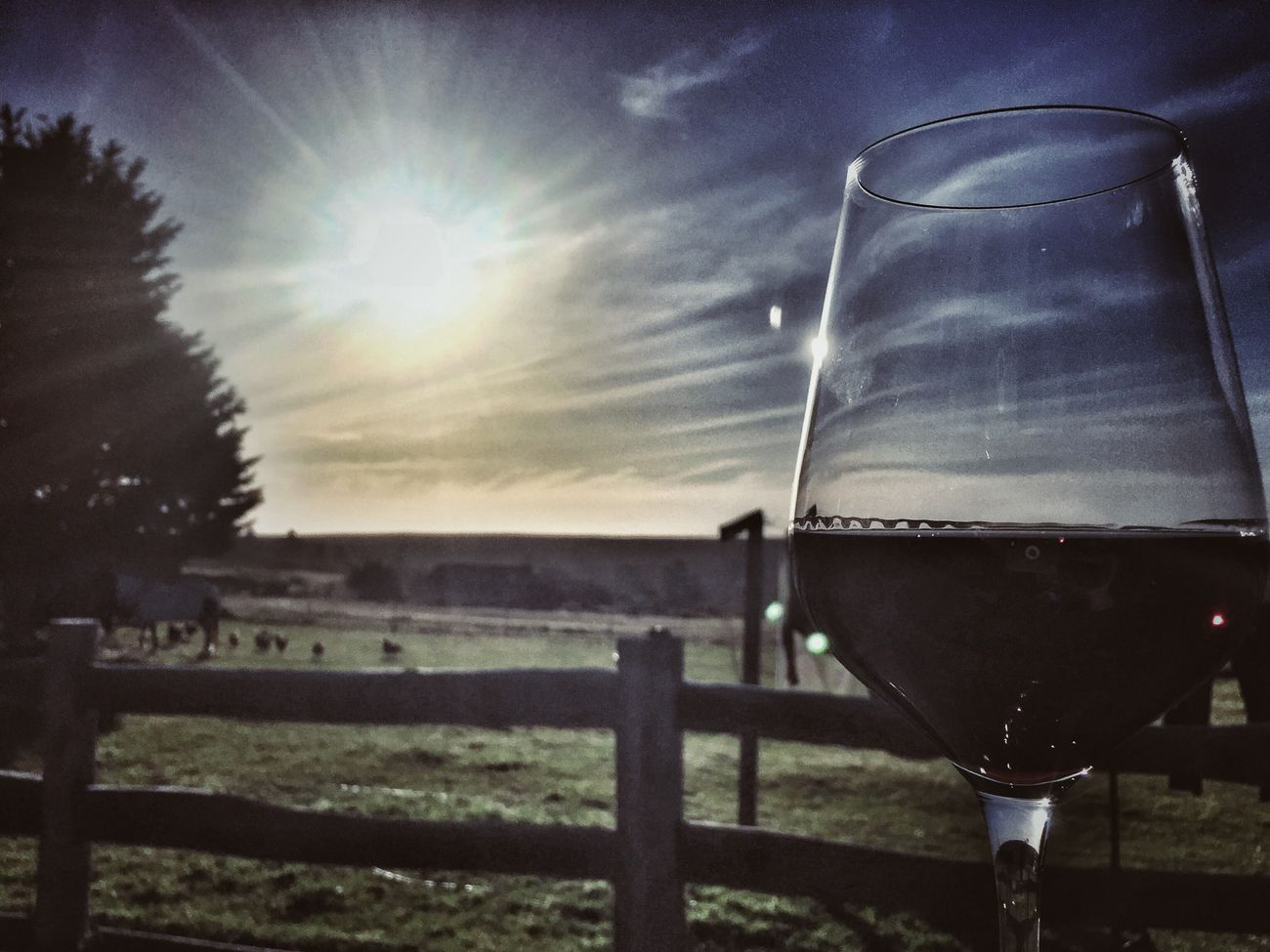 Red wine sunset Sky Refreshment Drink Outdoors Food And Drink Nature Close-up Alcohol EyeEm Best Edits Rural Scene Landscape Sunset #sun #clouds #skylovers #sky #nature #beautifulinnature #naturalbeauty #photography #landscape Wine Lovers Wineglass