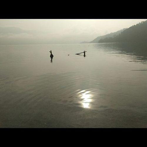 Lut tawar, danau di atas awan, sejuta cerita, sejuta bahagia. Ilovegayo Gayodiatasawan Bolanggayo