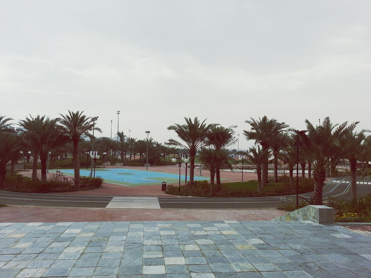 American college of the middle East♡♡♡