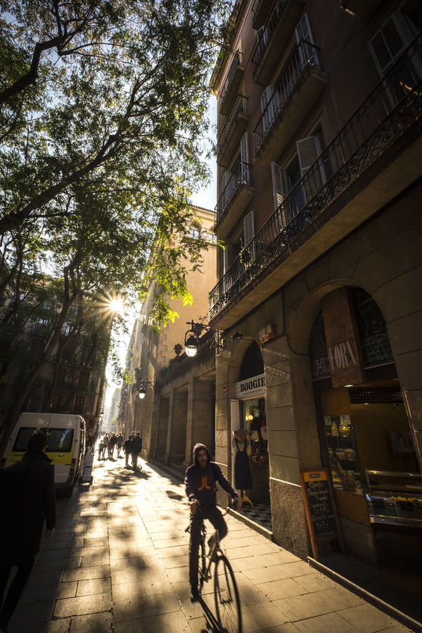 Street in Raval in Barcelona Catalonia Spain Architecture Barcelona Bicycle Building Exterior Built Structure City Cycling Day Europe Land Vehicle Men Mode Of Transport Neighborhood One Person Outdoors Raval Raval Barcelona Real People Riding Road SPAIN Street Sunlight Transportation Tree