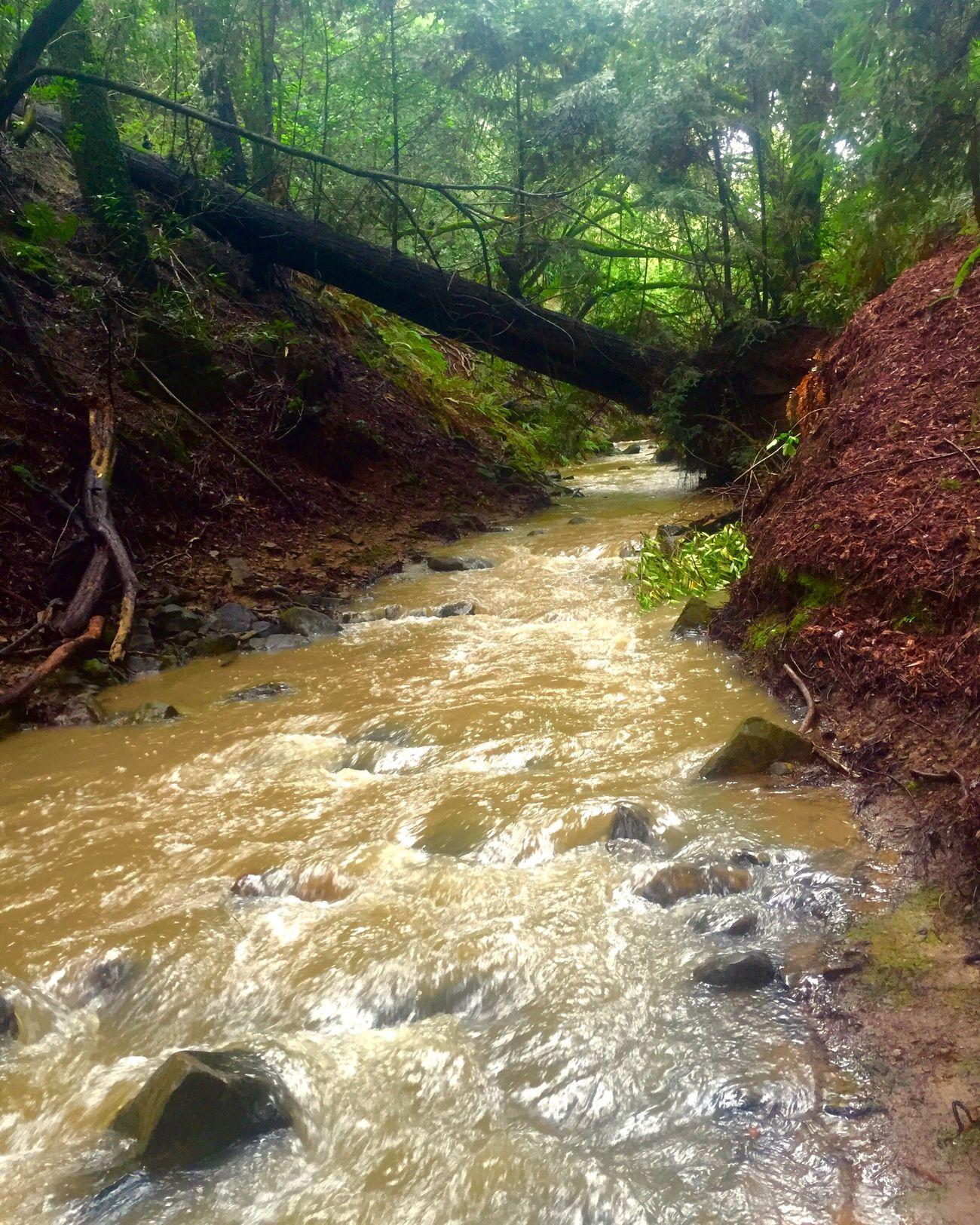 Chillin. Hello World Hanging Out Taking Photos Enjoying Life Hiking California Relaxing