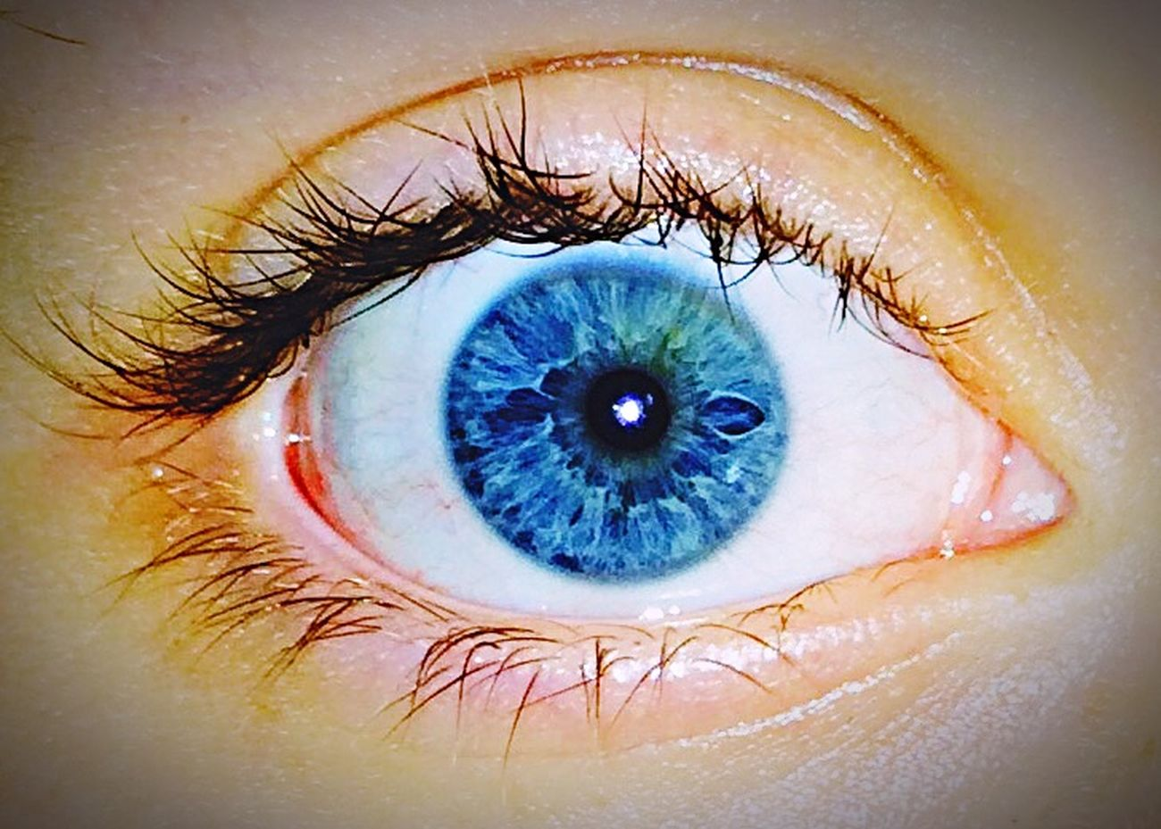 Eye Blue Eyes Me Bright Memorizing