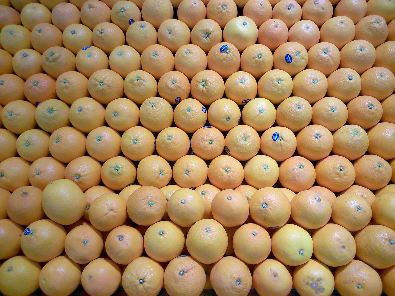 Backgrounds Close-up Food Fruit Goods Large Group Of Objects Market No People Orange Sour