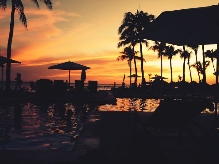 Bad day at the office... 🙄 Sunset Silhouette Tranquility Sea Beauty In Nature Beach Swimming Pool Nature Tranquil Scene Vacations Sky Scenics Outdoors Reflection Horizon Over Water Palm Tree No People Tree Day From My Point Of View EyeEm Gallery EyeEm Lifestyles EyeEmNewHere Travel Destinations Mix Yourself A Good Time