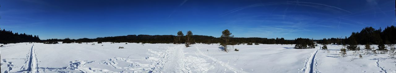 Tree Blue Snow Forest Sky Nature Landscape Winter Cold Temperature No People Clear Sky Outdoors Beauty In Nature Scenics Germany Sachsenkam EyeEm Nature Lover Eyem Best Shots Panoramic Panoramic Photography Panoramic View Panorama