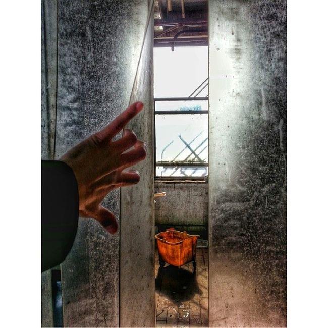 A walk through the Abandoned Warehouse Abandonedwarehouse Daylight dayturnsintonight 77hoods my_other_pictures_are_even_better McKinleyPark wu_chicago wwimb_chi waitingforthesunset wwim8_chi walkthisway igchicago imagesnipers hand hotshotz_ handmodel ink361_standingsolo igerschicago