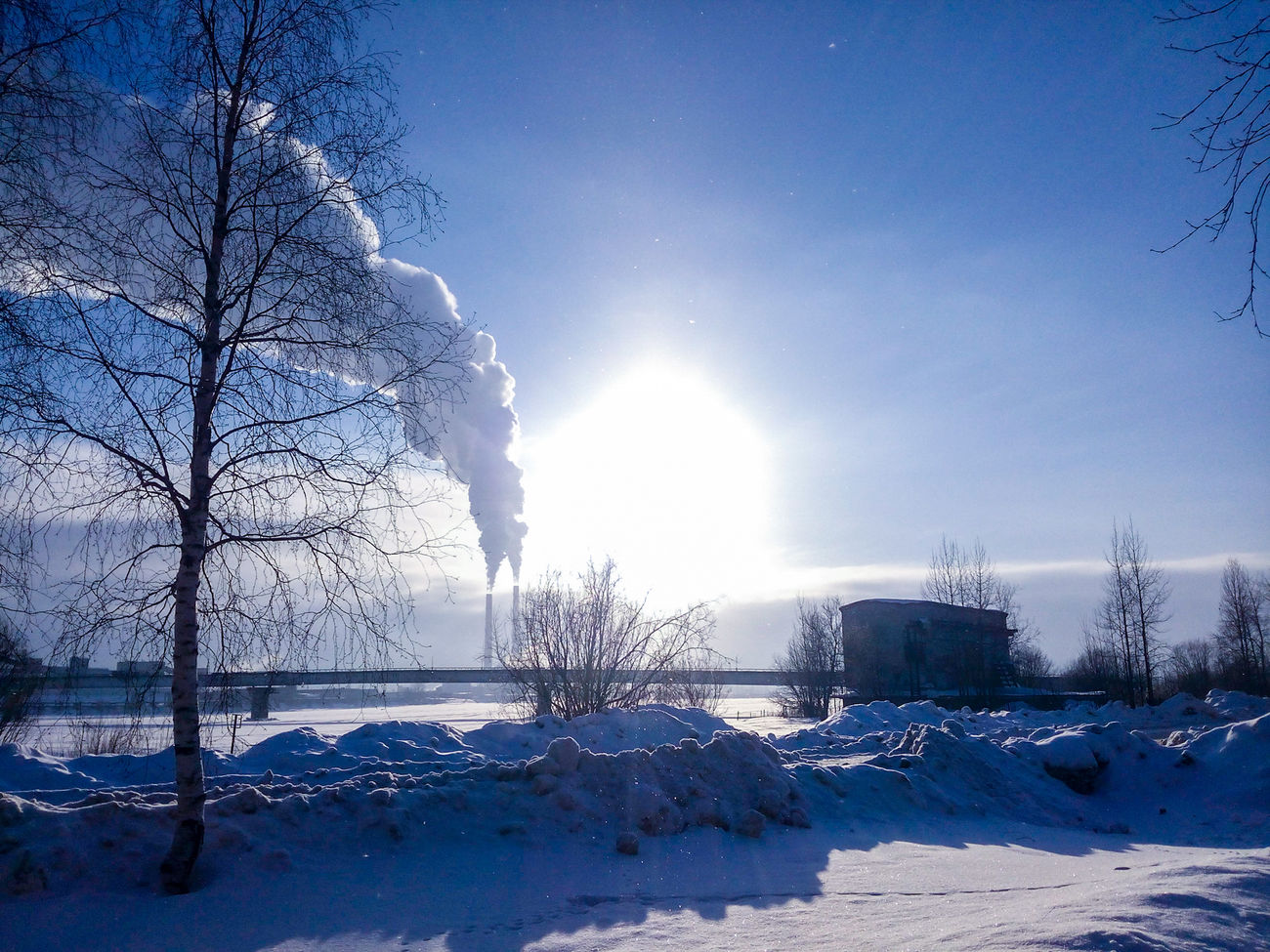 Архангельск, Сульфат Nature Snow Cold Temperature Sky Beauty In Nature Winter No People Tree Day Архангельск аипк Сульфат ТЭС зима зима❄️ февраль мобильноефото