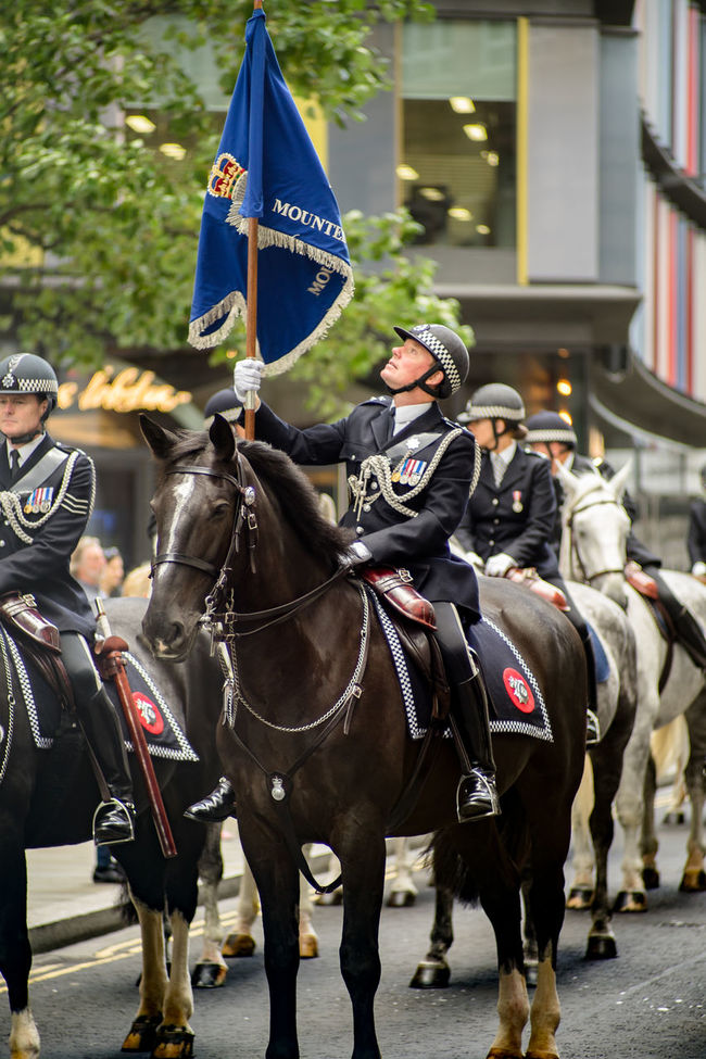 Cuirassier Cavalry Celebration Flag Flag Pole Gonfalonier Horse Horse Cart Horseback Riding London LONDON❤ Metropolitan Police Mounted Branch Mounted Police Parade People And Places Riding Sonyalpha Traditional Clothing Working Animal Working Animals The Culture Of The Holidays London Lifestyle