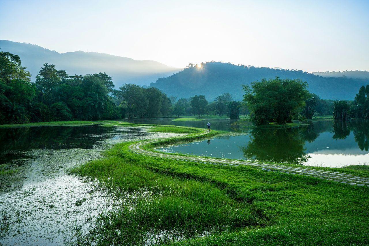 The S curve Landscape Tasik Taiping Taiping Lake Perak Malaysia Curves Perfect View Serene Calm Feel The Journey Fine Art Photography Color Of Life Hidden Gems