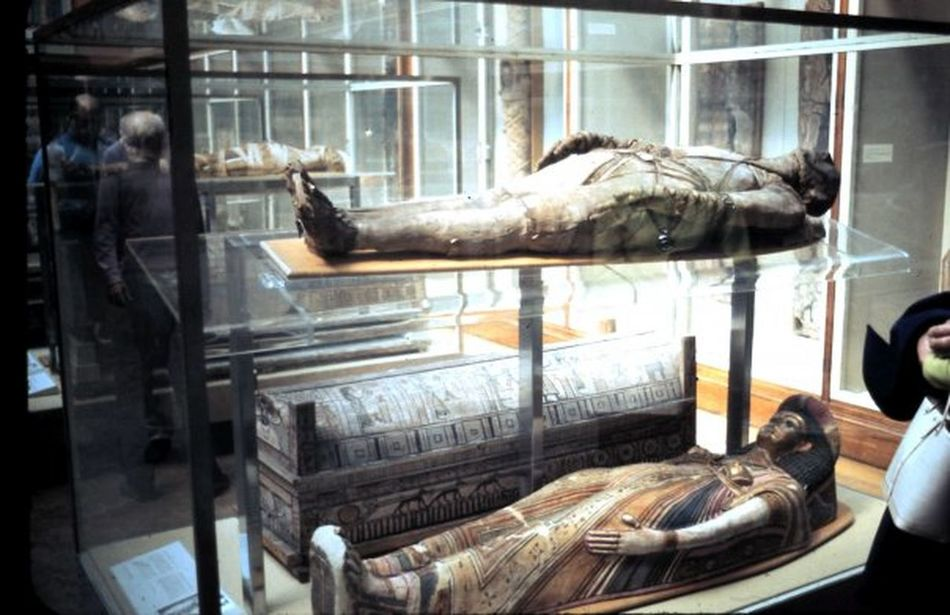 British National Museum Human Body Part Indoors  Mummies Mummies At The British National Museum Museum Display Travel Destinations Window Display