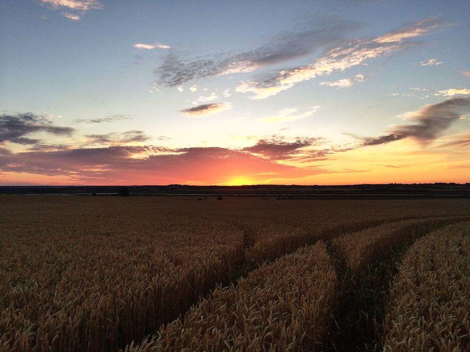 Beautiful west Mersea sunset First Eyeem Photo