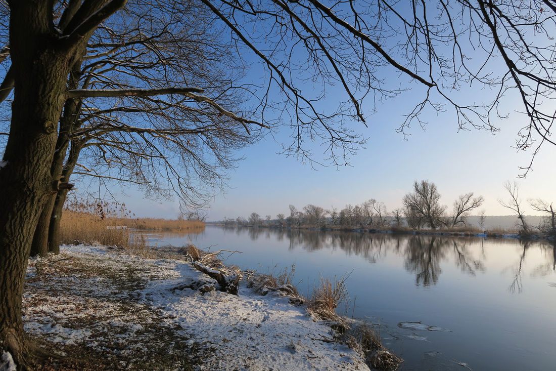 Havel river landscape at winter. Havelland, German Winter River River View Landscape Riverscape Wintertime Havel River Havel Havelland Germany Brandenburg Hohennauen y Willow Tree Snow Snow ❄ Landscapes With WhiteWall