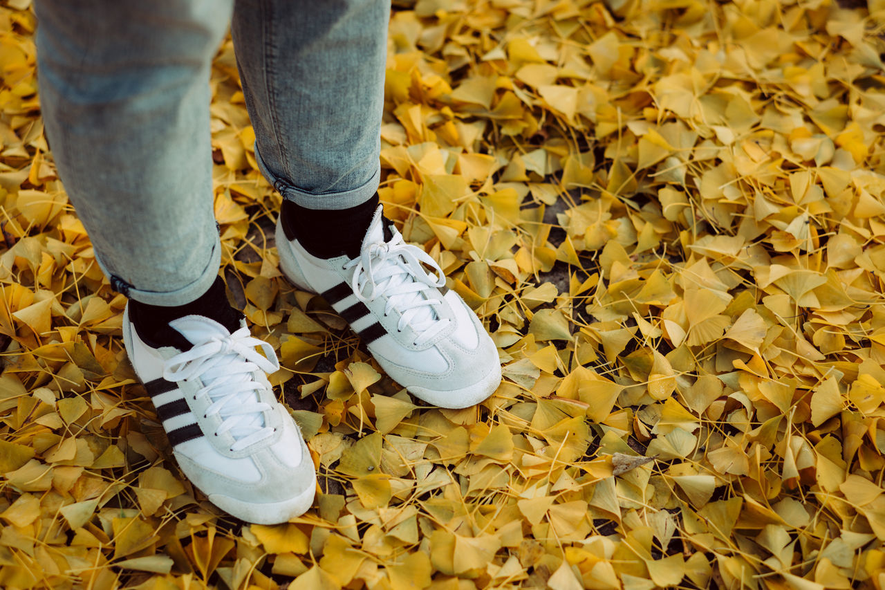 Low Section Of Woman Standing On Autumn Leaves At Field