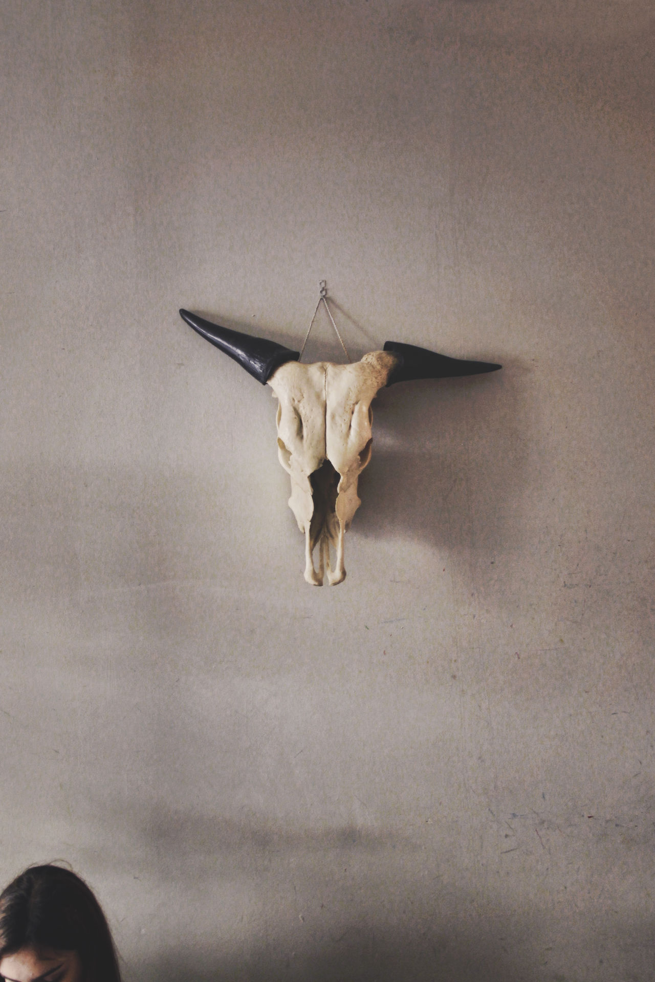 Found this cool skull hanging on a wall in a cafe in Gracia Skull Wall Hanging