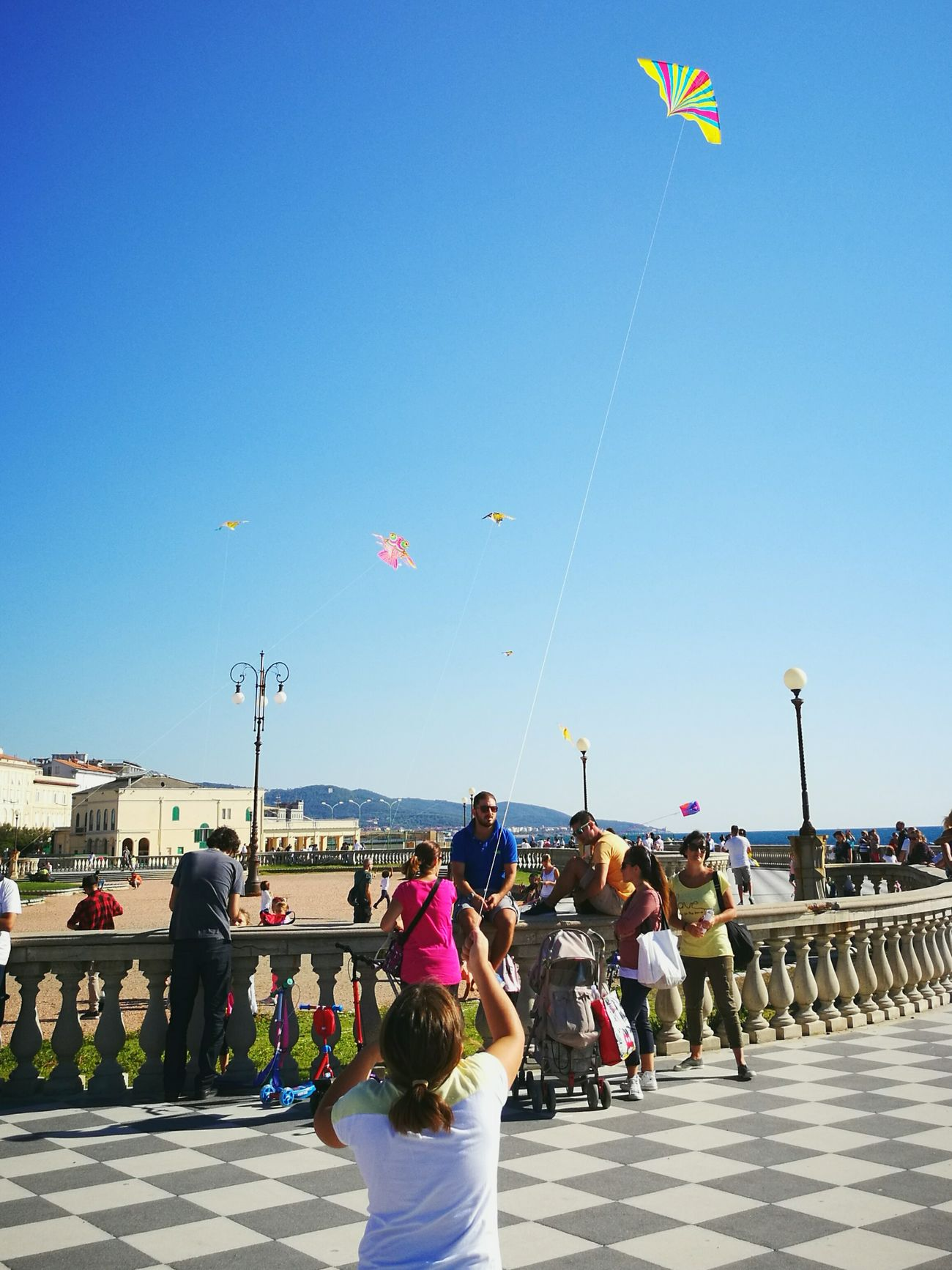 Clear Sky Blue Large Group Of People Person Sunny Childhood Flying A Kite Kites In Motion Clear Sky Kitefestival Vibrant Color People And Places la felicità è....2