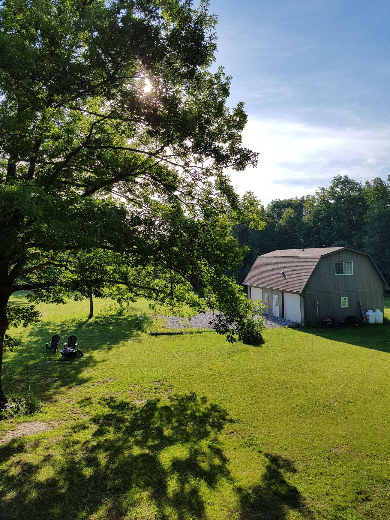 The back yard (side yard) ☺