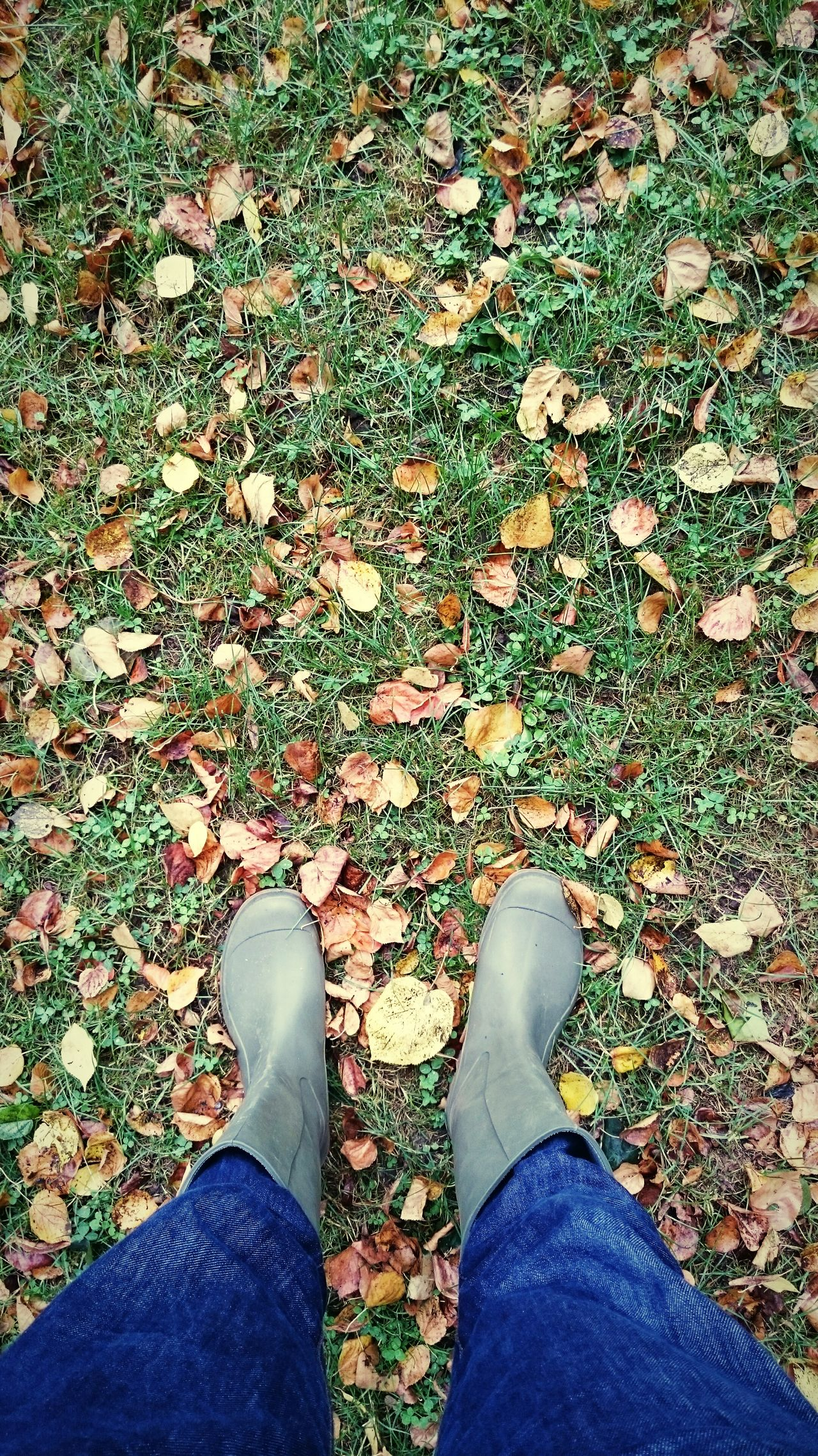 It's time for Atumn /// Autumn Colors Autumn Leaves Autumn Collection Gumboots Nature_collection Nature Top Perspective Ariel View Self Portrait Outdoors