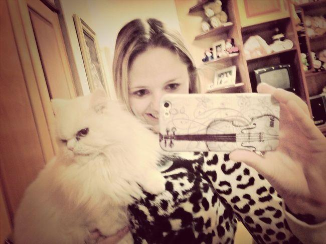 My Cat Milk
