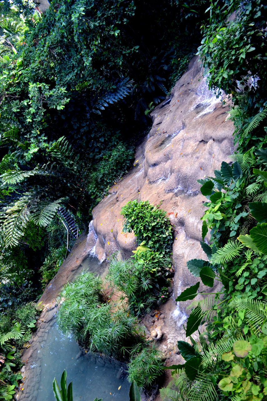 nature, high angle view, beauty in nature, no people, rock - object, water, tree, scenics, plant, growth, tranquility, outdoors, green color, day, physical geography, waterfall, forest, moss, landscape, satellite view
