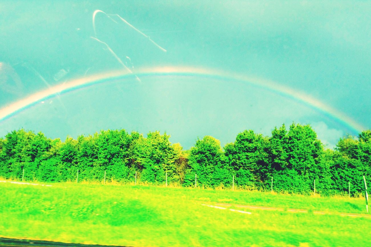Nature On Your Doorstep Hello World Green Green Green!  Nature Arc-en-ciel  Colors Rainbow Enjoying Life In The Car Effect