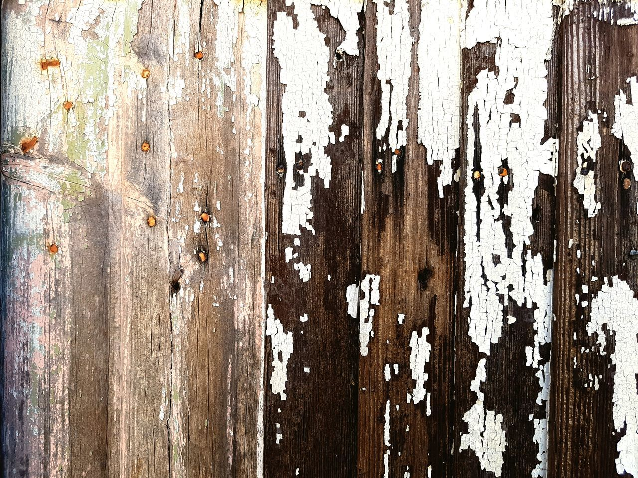 textured, wood - material, backgrounds, close-up, no people, full frame, outdoors, day