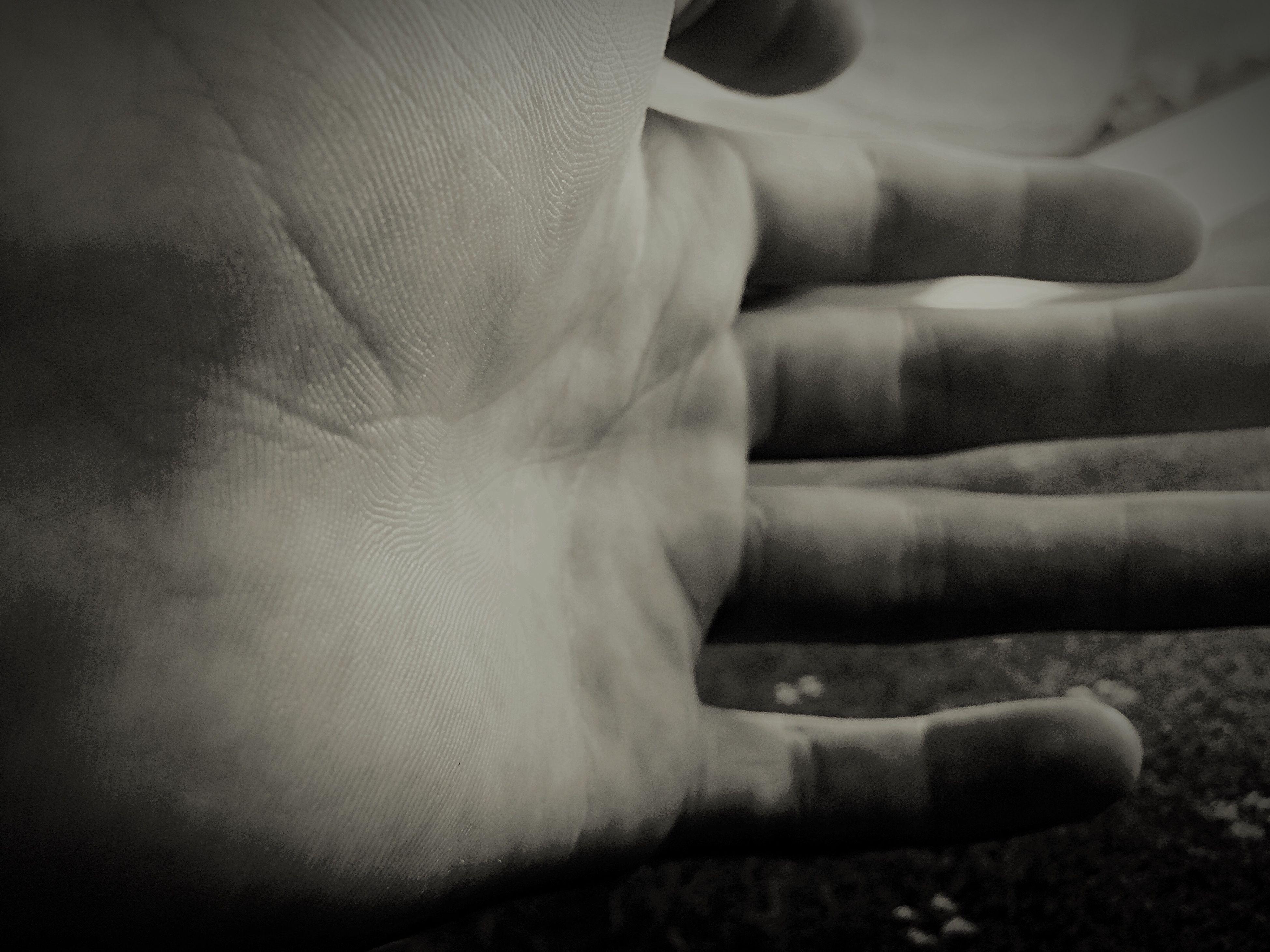 Human Hand Human Hand Black And White