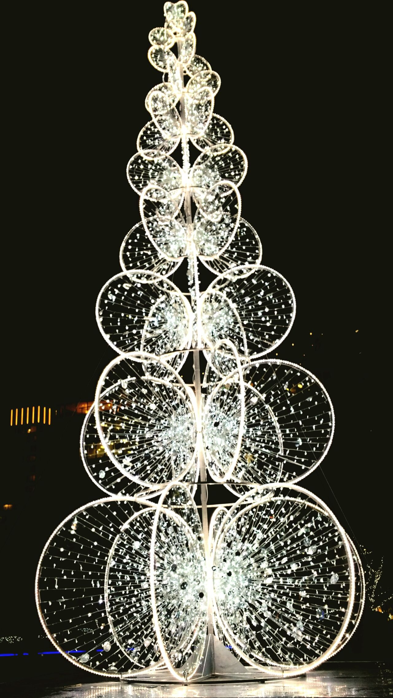 Christmas Tree Light Up Your Life TheQueensWalk