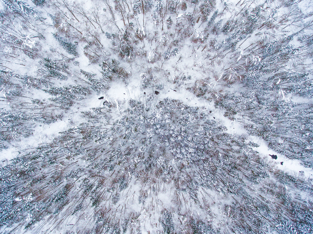 Aerial Photo taken with DJI Phantom 4. Aerial Aerial View Backgrounds Close-up Day Dji Drone  Dronephotography Full Frame Nature No People Outdoors Phantom River Sky Snow Trees Winter