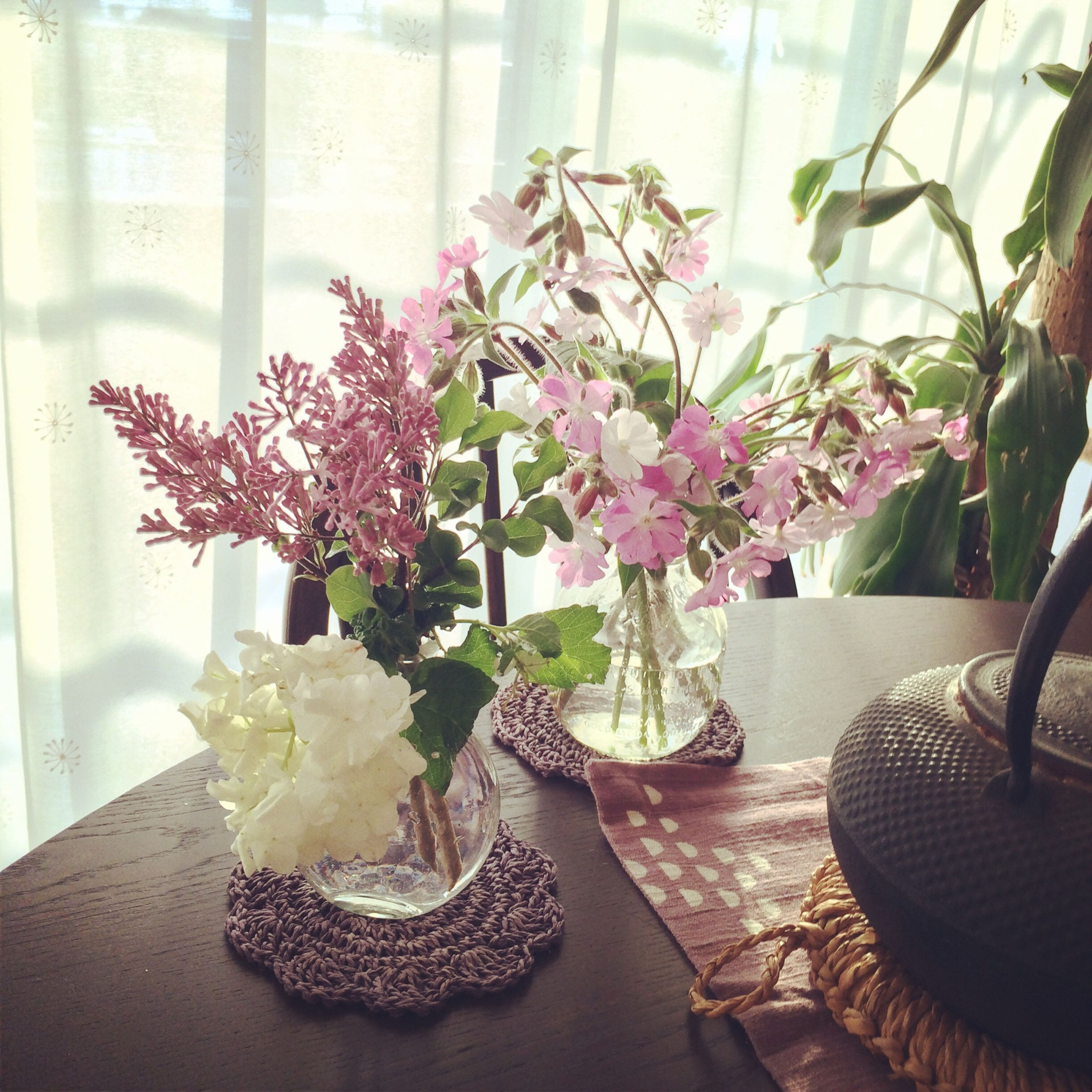 indoors, flower, potted plant, vase, table, home interior, freshness, fragility, chair, plant, window, growth, flower pot, flower arrangement, house, no people, high angle view, petal, nature, decoration