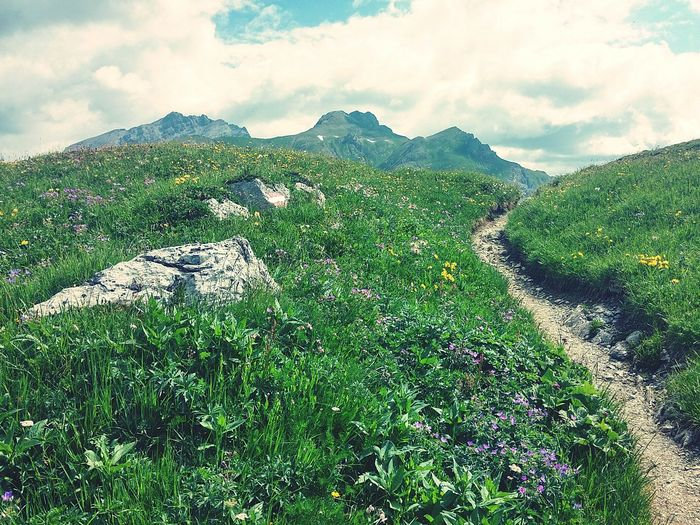 Horizontal Nature_collection Beauty In Nature Enjoyinglife  Tranquil Scene Tranquility Outdoors Alps Alpine Hiking Road Roadscenes Roadsidephotography Transportation