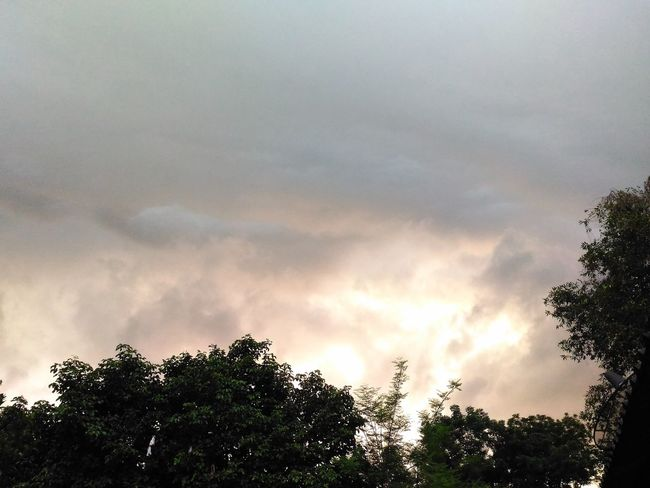 Raincloud Beautiful Beautifulviews Cloud Evening Evening Sky Lastlight Nature Overcast Overcastsky Photo Rain Raincloud Rainclouds Sky Sunshine Day Sunshine ☀ Tree ธรรมชาติ ฝนกำลังตก วิวสวย เมฆ เมฆฝน